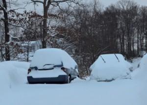 大雪予報は無難?論理的思考を妨げる悲観思考のバイアス
